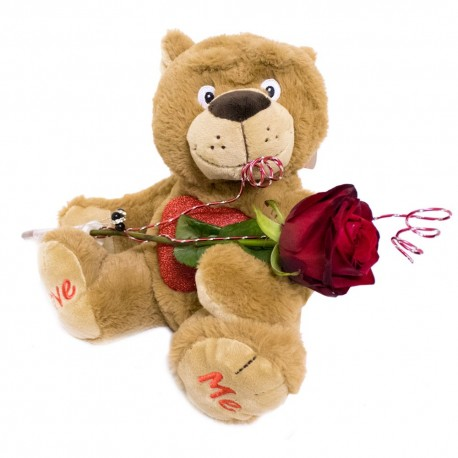 Single Red Rose with teddy